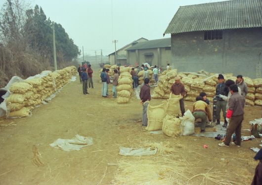 Grain purchase in front of Baekseok Church (1980s)
