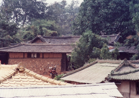 Distinct tile-roofed house in Tanhyeon-dong